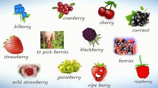 Ягоды на английском. Учим названия ягод на английском