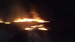 שריפה ב יער שוקדדה שב עוטף עזה בלון תבערה