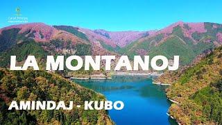 Son de la loma en Esperanto / La montanoj / Amindaj – Kubo