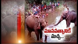 Kerala Elephant Incident | MP Maneka Gandhi & Bollywood Celebrities Demands Strict Action