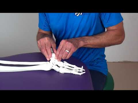 Posterior Ankle Impingement Test By Chris Frederick, PT