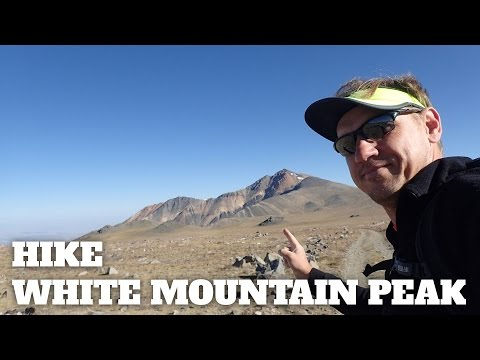 Hike White Mountain Peak (California)