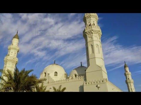 Las Mezquitas - Informe exclusivo de El Cálamo