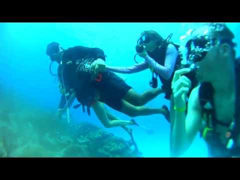 buceo en San Andres - mergulho em San Andres - Colômbia