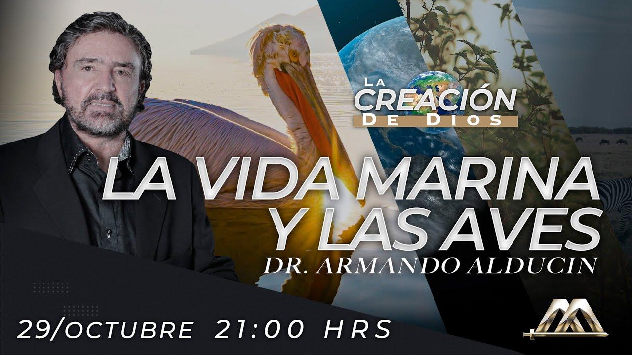 """""""La Vida Marina y las Aves"""" - La Creación de Dios"""