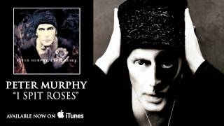 Peter Murphy - I Spit Roses [Audio]