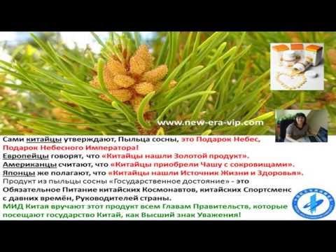 Хвойная пыльца: применение и полезные свойства