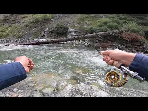 Kashmir Fly Fishing - Kashmir Angling - Himalayan Fly Fishing Guides