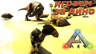 Играть за динозавра в Ark: Survival Evolved - Play As Dino