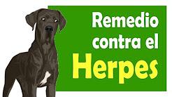 Tratamiento para el Herpes: Curar el herpes con un remedio 100% natural
