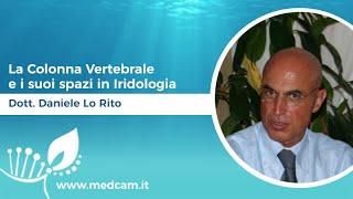 La Colonna Vertebrale e i suoi spazi in Iridologia [...] - Dott. Daniele Lo Rito
