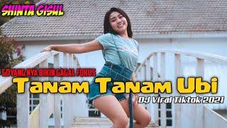 Download DJ Viral Tiktok 2021 Full Bass ( Shinta Gisul ) Tanam Tanam Ubi