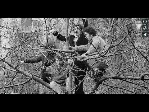 teaser uccelli 1968