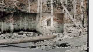 """The Patterson Gimlin Film, """"One Minute to film, 45 years to explain"""""""