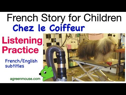 KS2/3 French listening practice: At the hairdresser's