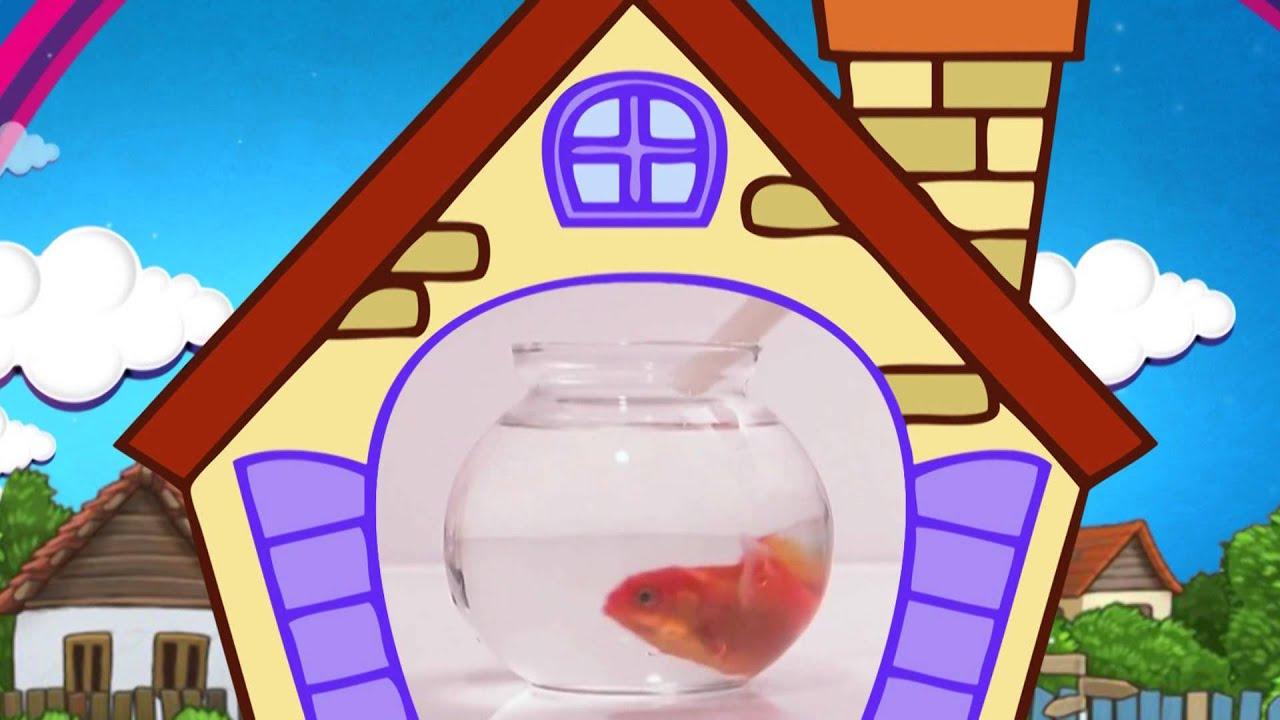 Стихи для малышей о домашних питомцах. Кошка, собака, попугай, рыбка. Наше всё!