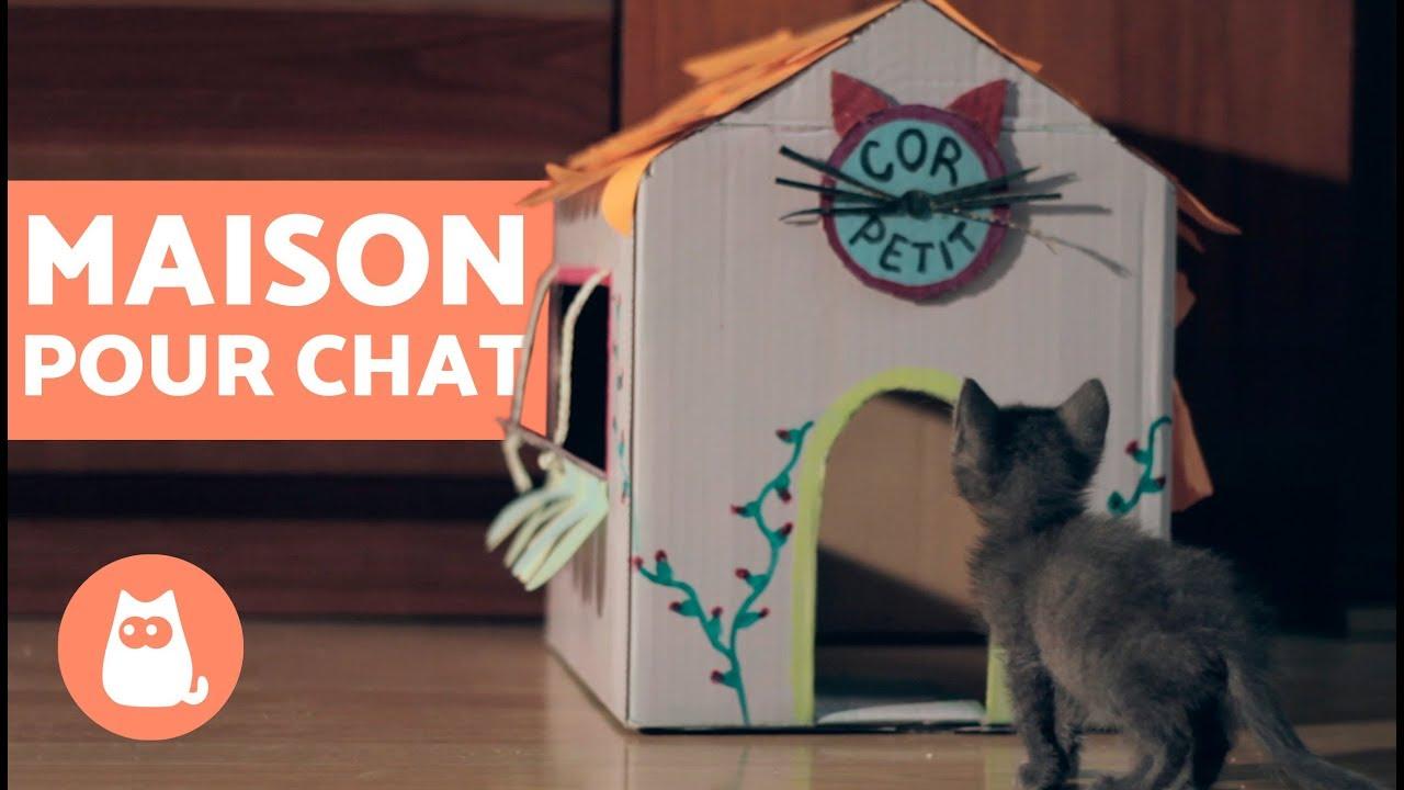 Cabane En Carton Diy diy- fabriquer une niche pour chaton trop mignon !