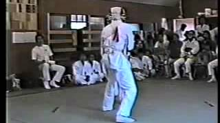昔の日本拳法