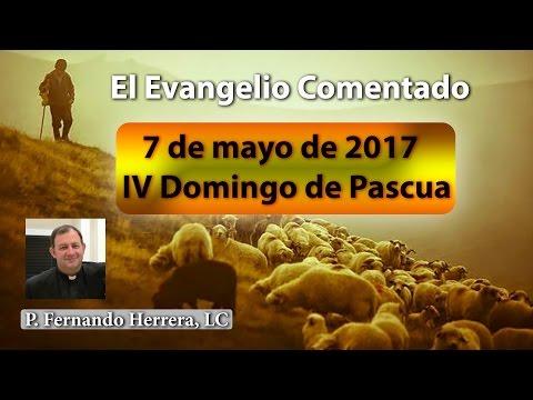IV Domingo de Pascua (7 de mayo de 2017) Domingo del Buen Pastor
