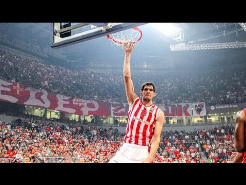 Image Result For Boban Marjanovic