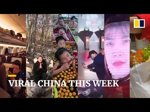 Viral China this week: First Shake Shack in China: What do the Chinese think of it and more