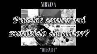 Download lagu Nirvana - Love Buzz sub español