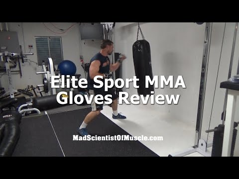 Elite Sports MMA Gloves Review