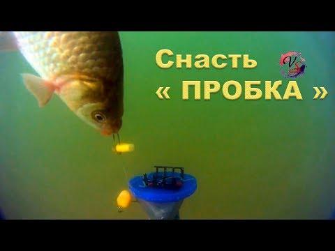 "На Озере. Подводные съемки ловли на ""Пробку"". Рыбалка. Ловля на пробку. fishing"