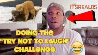 TRY NOT TO LAUGH CHALLENGE Reaction by @itsreal85