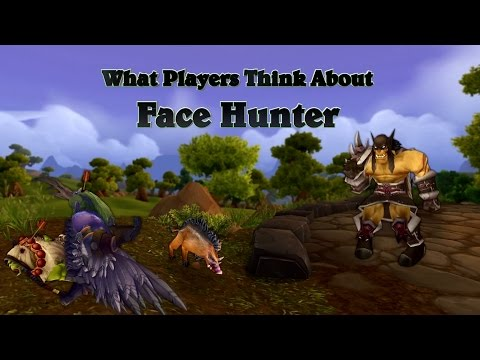 What Pros Think About Face Hunter