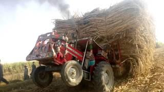 Massey fergosan 375 pakistan