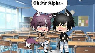 Oh Mr Alpha~ episode 6 (please watch 😢)