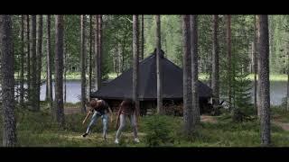 Forest&fairies - Finland (חתיכה מהלב)