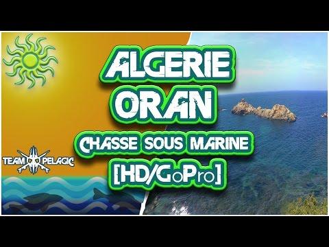 CHASSE SOUS MARINE ALGERIE ORAN 2015/2016 [HD/GoPro]