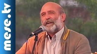 Gryllus Vilmos: Somvirággal, kakukkfűvel (dal, koncert részlet) | MESE TV