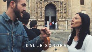 Calle Sonora - Delafé y Las Flores Azules (Vacaciones de Amar)