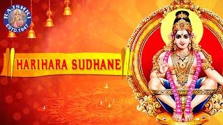 Harihara Suthane Sharanam Sharanam Ayyappa | Ayyappa Devotional Songs | Ayyappa Nithyaparayanam