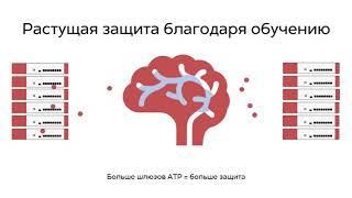 Облачное машинное обучение в шлюзах безопасности Zyxel ZyWALL серии ATP