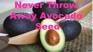 Never Throw Away Avocado Seed | Anti Aging Antioxidants Packed
