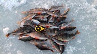 Ловля Окуня на Безмотылку Рыбалка в Глухозимье Подводные съемки