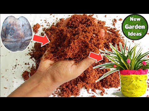 How to Make Cocopeat at Home /Quick and Easy Method/ Gardening Ideas