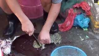 #5 Odkrywanie Chin - Chińskie targowisko - poproszę dwie żaby