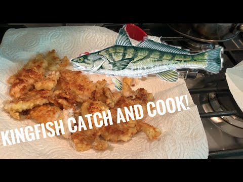 Northern Kingfish Catch And Cook! (delicous)