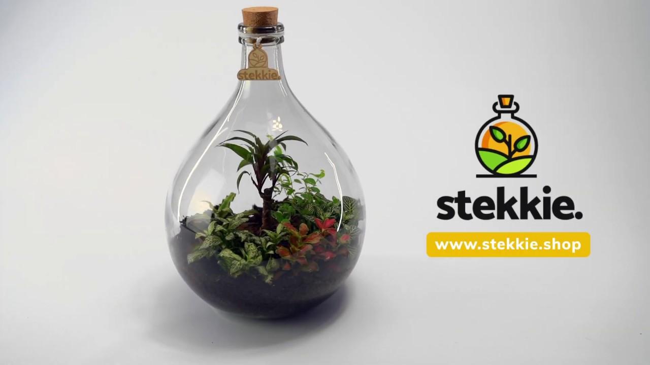 Stekkie. Made by Goeijenbier media