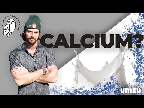 Top Calcium Rich Foods To Increase Testosterone Naturally