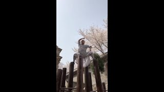 Chinese Kung Fu master performs Shaolin Fist