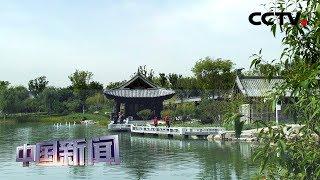 [中国新闻] 2019北京世园会迎来最后一个公共开放日 | CCTV中文国际