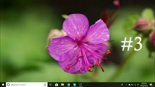 Easy way to start a program in windows 10 + bonus tips