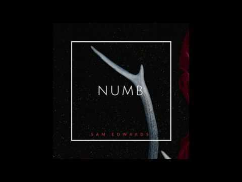 Sam Edwards - Numb (Official Audio)