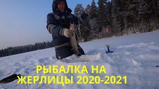 Зимняя рыбалка 2020 2021 Ловля щуки на жерлицы Выставил жерлицы в ночь Эксперимент с поводками